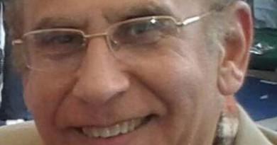 محسن الغمرى