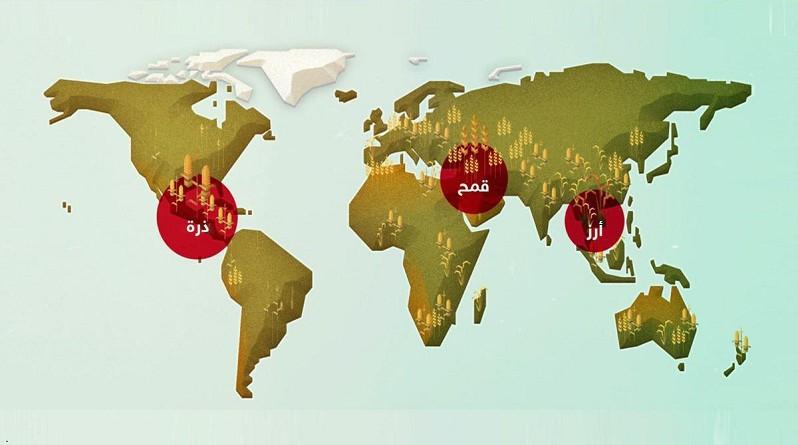إنفوجرافيك.. ماذا تعرف عن بنك البذور العالمي؟