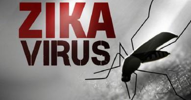 """إثبات وجود علاقة بين فيروس """"زيكا"""" ومتلازمة غيان- باريه"""