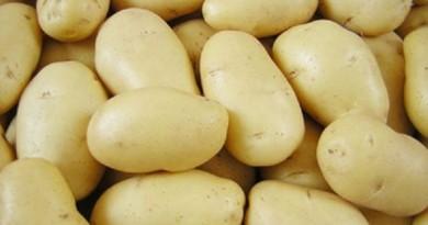 احذري من تخزين البطاطس في الثلاجة