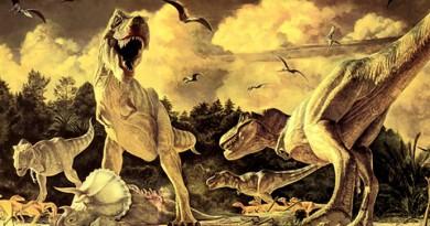 """أسلاف وأبناء عمومة الديناصور """"تيرانوصور ركس"""" كانوا أصغر حجمًا"""