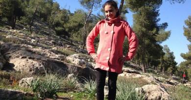 ديما الواوي طفلة فلسطينية تبلغ من العمر 12 عاماً
