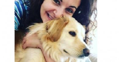 وفاء الكلاب شاهد فرحة كلب بلقاء صاحبته بعد غياب