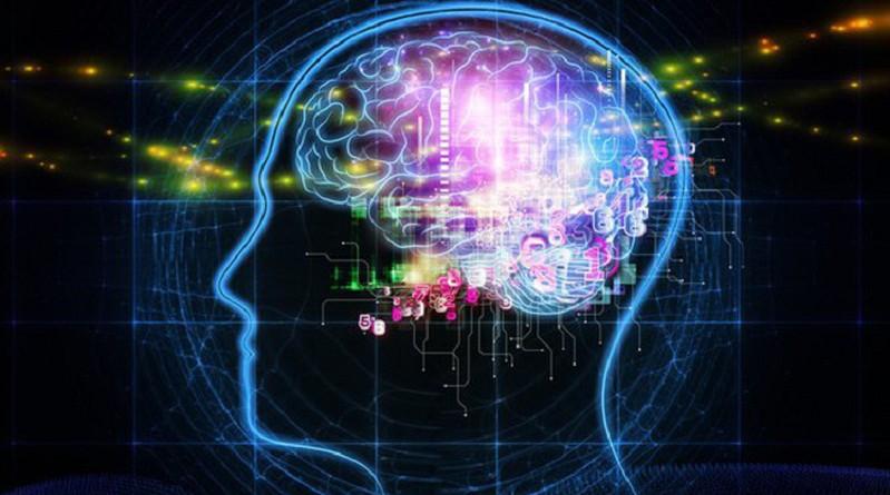 علماء يكتشفون ارتباط حب المغامرات ببنية المخ