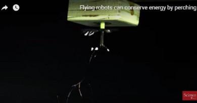بتقنية الالتصاق الكهربائي ابتكار روبوتات طائرة بحجم الحشرات