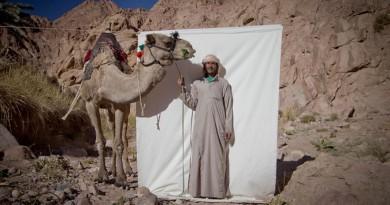 """""""حراس البستان"""" عن السينما المصرية في مهرجان الأخضر السينمائي الدولي"""