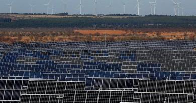 الشمس أكثر المصادر إسهاما بإنتاج الكهرباء