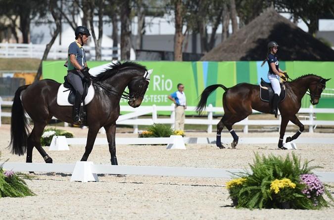 فرصة ذهبية لفرسان أمريكا الجنوبية في أولمبياد ريو