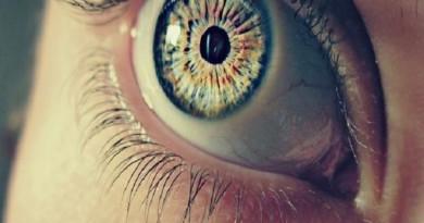 العين