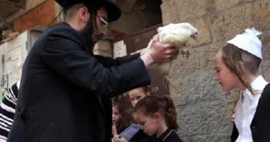 عيد الأضحى اليهودي .. حينما يكفرون عن ذنبهم بالديوك