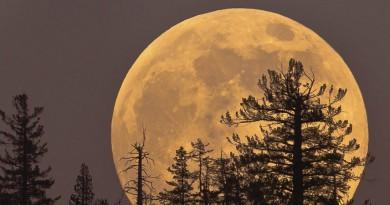 شاهد ظهور القمر العملاق فجر 14 نوفمبر حول العالم