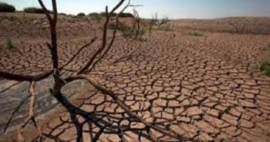 الأمم المتحدة: العجز بميزانية الإغاثة من الجفاف في زيمبابوي 140 مليون دولار