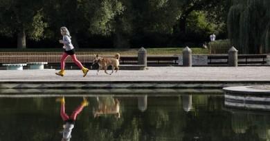دراسة: الحيوانات الأليفة قد تساعد أصحابها في التعامل مع مرضهم العقلي