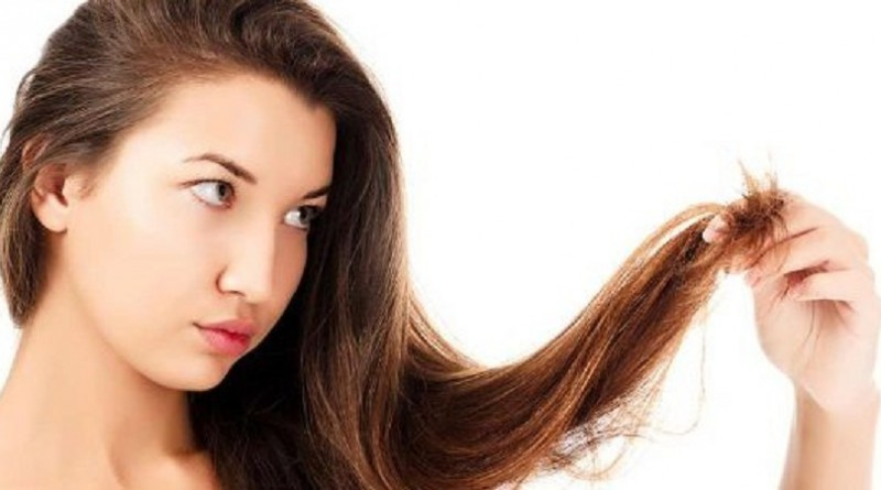 وصفات طبيعية للقضاء على تقصف الشعر