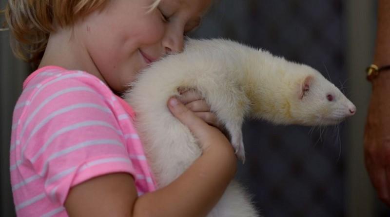 علماء: أفضل أصدقاء للأطفال هي الحيوانات