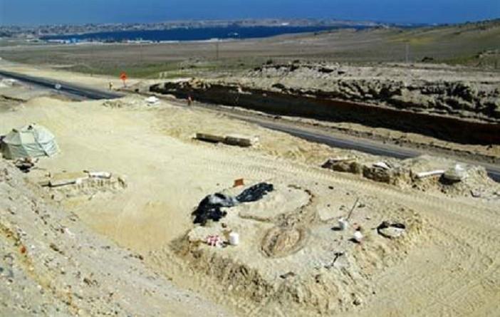 تحقيق اكتشاف أقدم بروتين في حفرية ديناصور عمرها 200 مليون عام