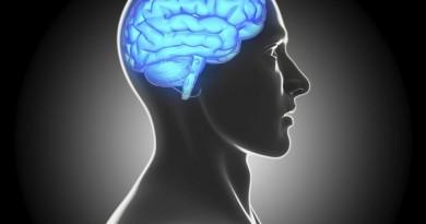 دراسة جديدة: دماغ الإنسان تستمر بالعمل 10 دقائق بعد وفاة الجسد