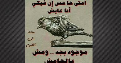 رباعيات محمد النقلى …لأمتى .. ؟!