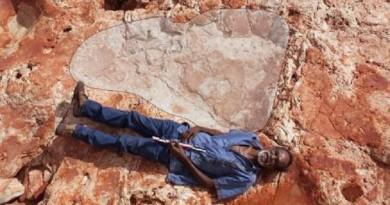 العثور على أكبر أثر لقدم ديناصور في العالم بأستراليا