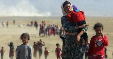 الخارجية المصرية : نقف جانب العراق في مواجهة العدوان التركي