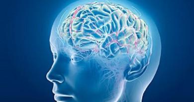 """علماء يكتشفون """"السرّ الجميل"""" في تخزين الذكريات"""