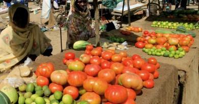 السودان يتوسع في حظر دخول المنتجات المصرية