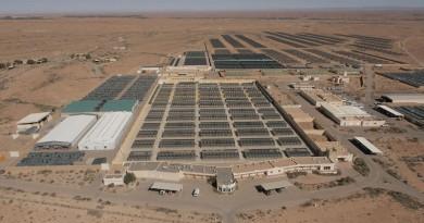 منتدى فاس مكناس الاقتصادي بالمغرب يكرم الصندوق الدولي للحفاظ على الحبارى