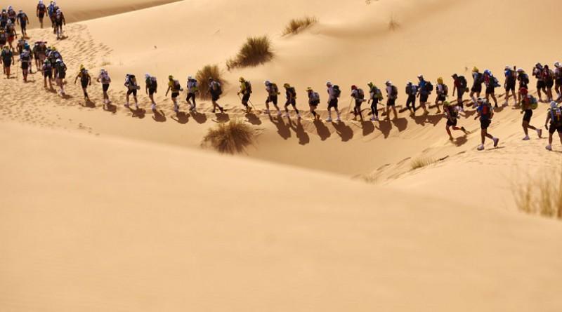 العلماء يتنبؤون أن الصحراء ستخضر قريبا بشكل كامل