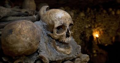 اكتشاف أسنان عمرها ملايين السنين سيعيد كتابة تاريخ البشرية