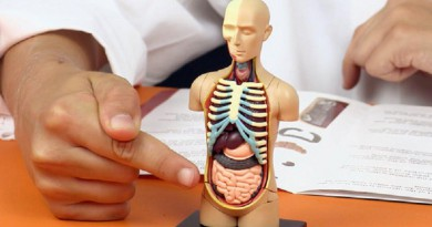 5 حقائق غريبة ومثيرة لا نعرفها عن أجسامنا..!