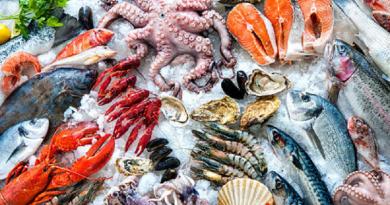 دراسة: السمك المجمدة لا تقل فائدة عن الطازجة