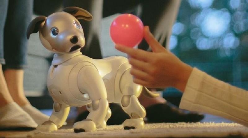 """سوني تعيد روبوتها الشهير الكلب """"أيبو"""" إلى الحياة"""