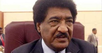 مصر تدرس خيارات الرد على استدعاء السودان سفيره
