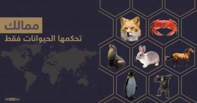 إنفوجرافيك.. ممالك تديرها الحيوانات فقط
