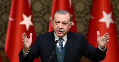 أردوغان يصف الجزائر بجزيرة الاستقرار ويأمل بزيادة التبادل التجاري معها