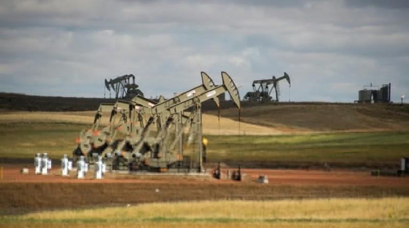 وكالة: زيادة الإنتاج الأمريكي تحول دون ارتفاع أسعار النفط