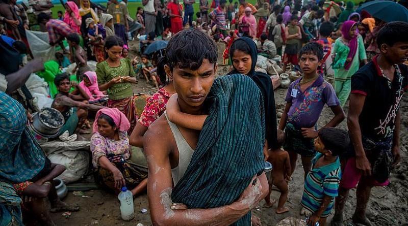 إرغام الروهنغيا على تسييج أراضي استولت عليها سلطات ميانمار