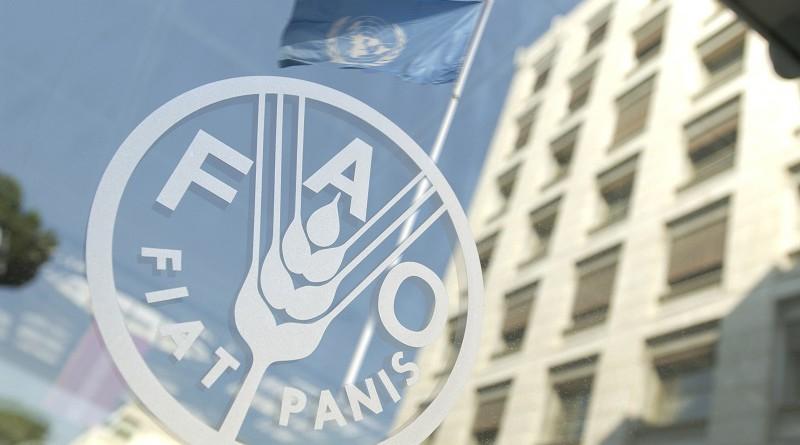 فاو: ارتفاع أسعار الغذاء 1.1% في فبراير