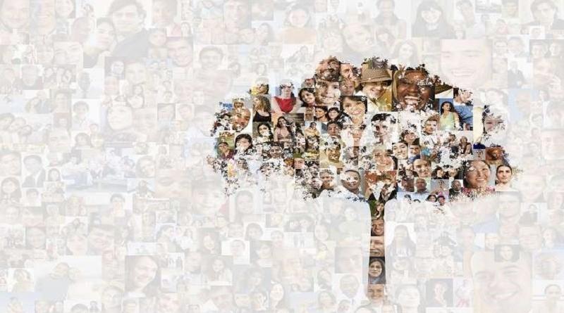 13 مليون شخص تجمعهم أكبر شجرة عائلة في العالم