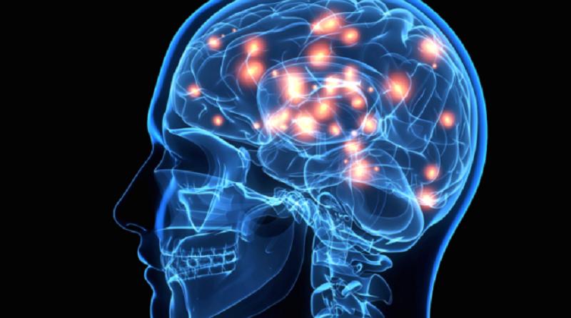 ماذا يحدث في الدماغ البشري لحظة الموت