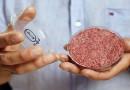"""عالم يقترح """"أكل لحوم البشر"""""""