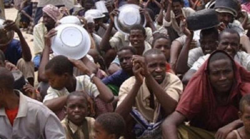تقرير: شمال شرق نيجيريا قد يواجه خطر المجاعة