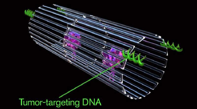 روبوتات نانوية تدمر الخلايا السرطانية