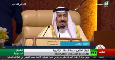 البيان الختامي للقمة العربية 29