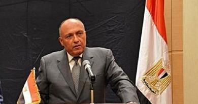 بيان من الخارجية حول تصريحات شكري بشأن إرسال قوات عربية إلى سوريا