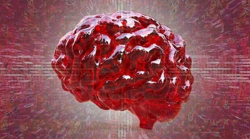 """علماء يتوصلون لمكان حدوث """"السحر"""" داخل الدماغ البشري"""