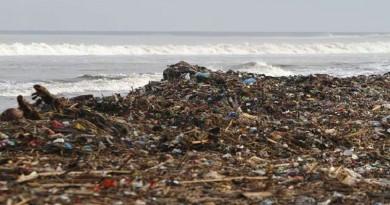 العلماء يحذرون من كارثة سُمية في مياه المحيطات