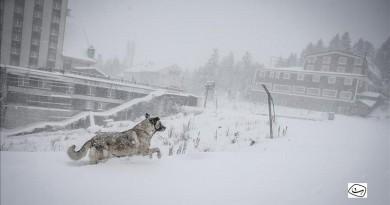 بدء موسم الثلوج غربي تركيا