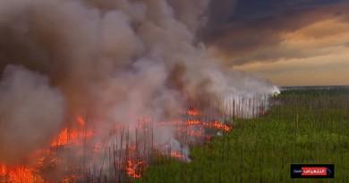 تحقيقات حريق أريزونا... حفل عائلي تسبب بحرق 470 كيلومترا مربعا