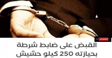 القبض على ضابط شرطة بحوزته 250 كيلو حشيش